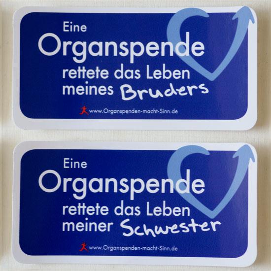 Variante: Eine Organspende rettete das Leben meines Bruders und Variante: Eine Organspende rettete das Leben meiner Schwester